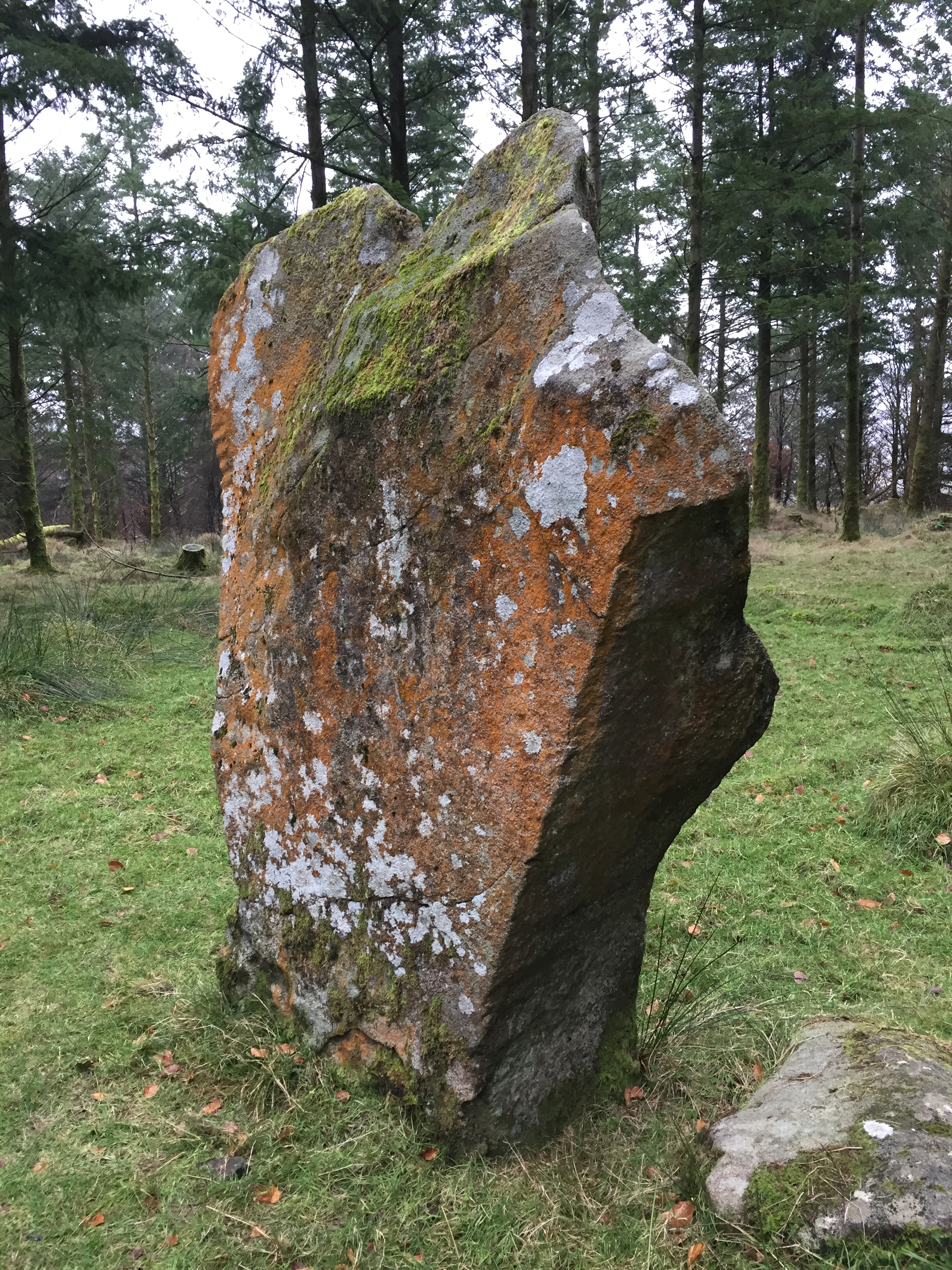 ogham stone wicklow ireland